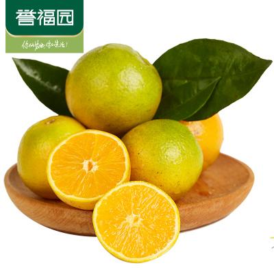 【譽福園】秭歸新鮮水果夏橙臍橙5斤小果橙子時令現摘單果果徑50-60mm小小橙子